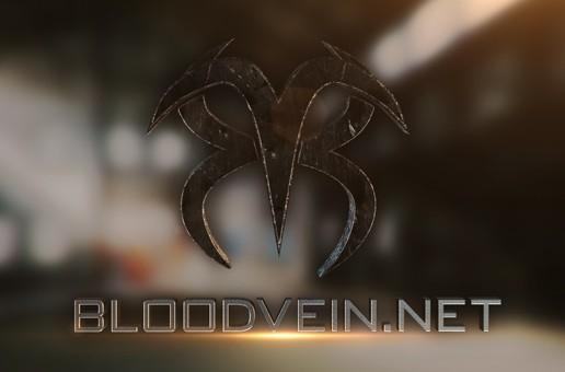 Restructuring Gaming on Bloodvein.net