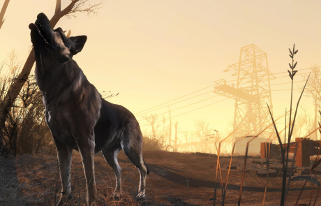 Fallout 4 HD Wallpaper Dogmeat
